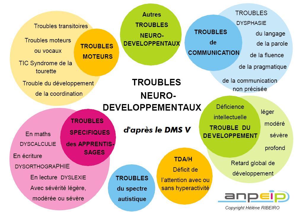 Troubles neuro-développementaux selon le DMS V